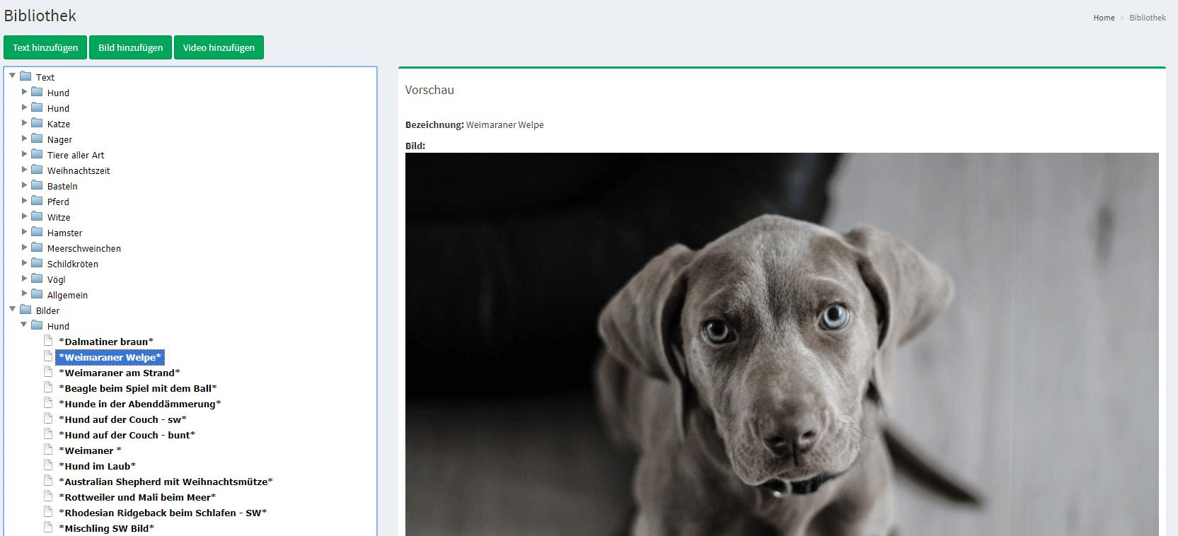 Newsletter direkt aus dem Tierarzt-Programm mit nur wenigen Klick erstellen, kein Problem mit VET7.well!
