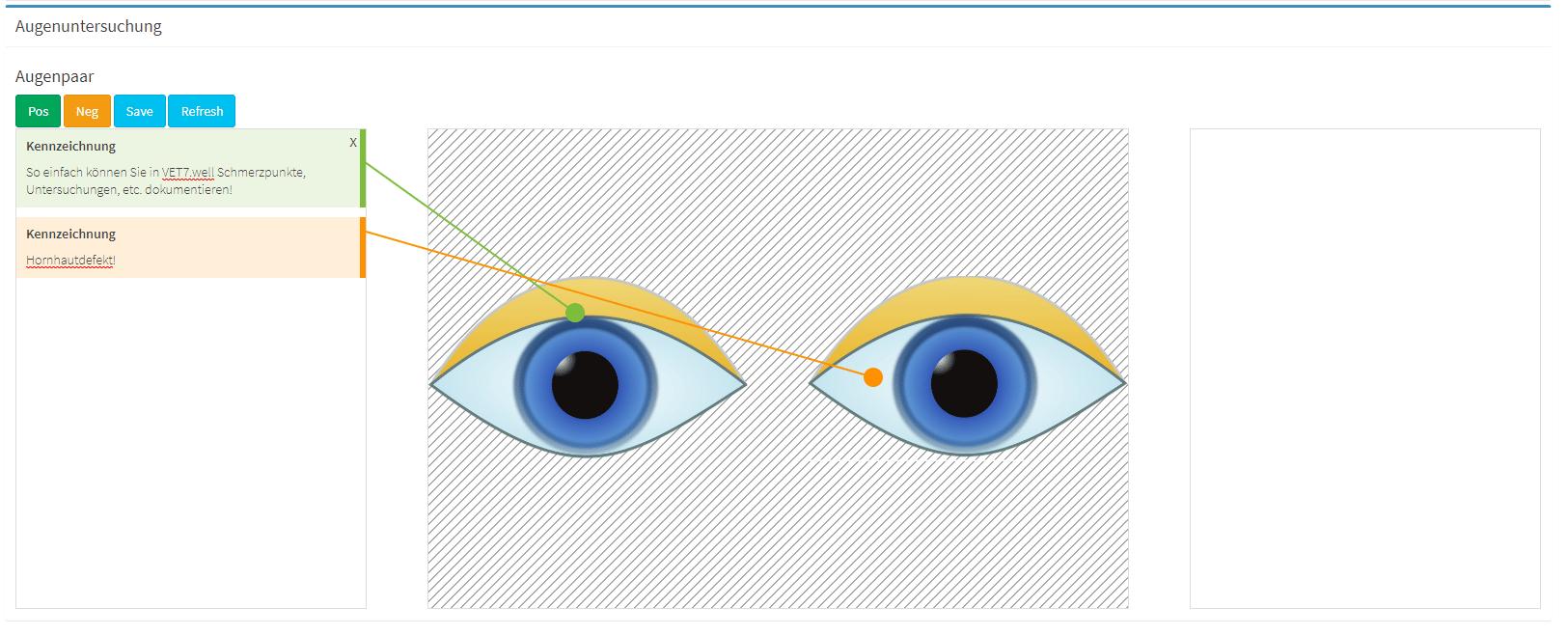Mit den individuellen Untersuchungsvorlagen in unserer Tierarztsoftware können Sie Schmerzpunkte platzieren, Defekte im Auge kennzeichnen und vieles mehr.